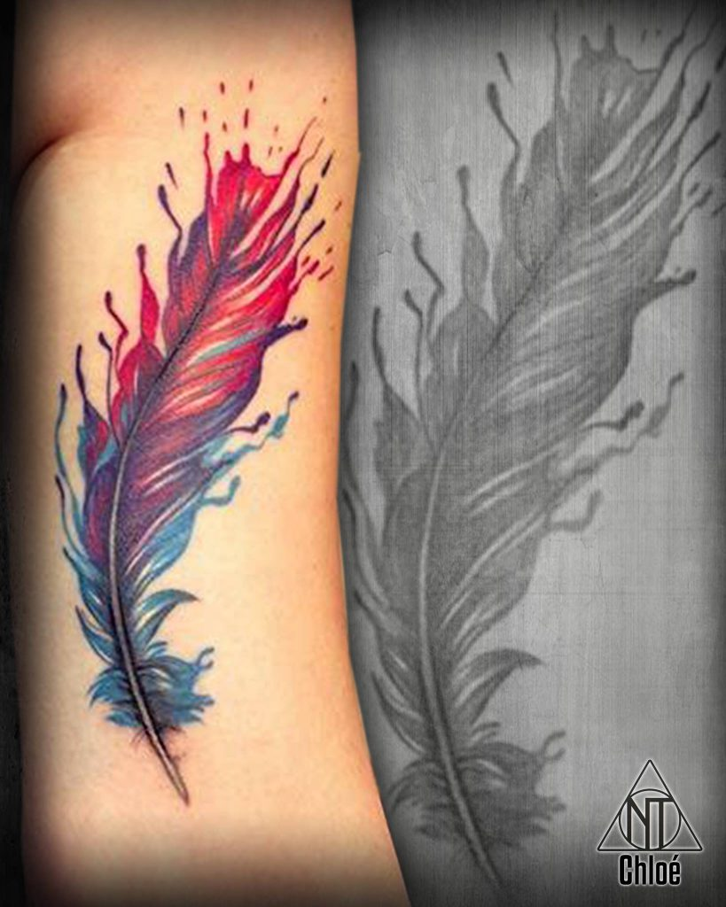 Feather - Plume