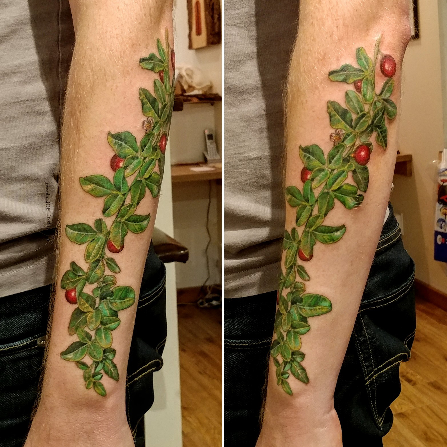 Triphasia trifolia tattoo